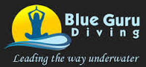 logo Blue-Guru. used on Snippy's Snaps Diving. to show eco-project participation and activities.